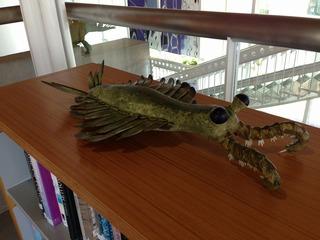 FELT F5 生命の海科学館