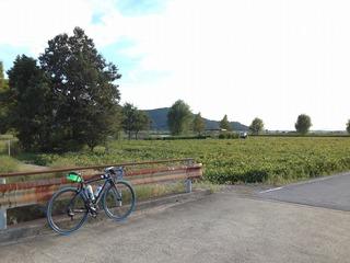 1309129自転車部ビワイチIMG_8810.jpg
