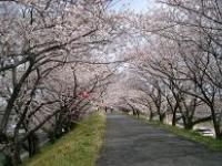 kaizougawa.jpg