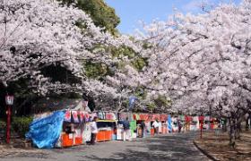 mukaiyama.jpg